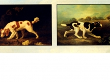 A Spaniel and a Pointer by George Stubbs